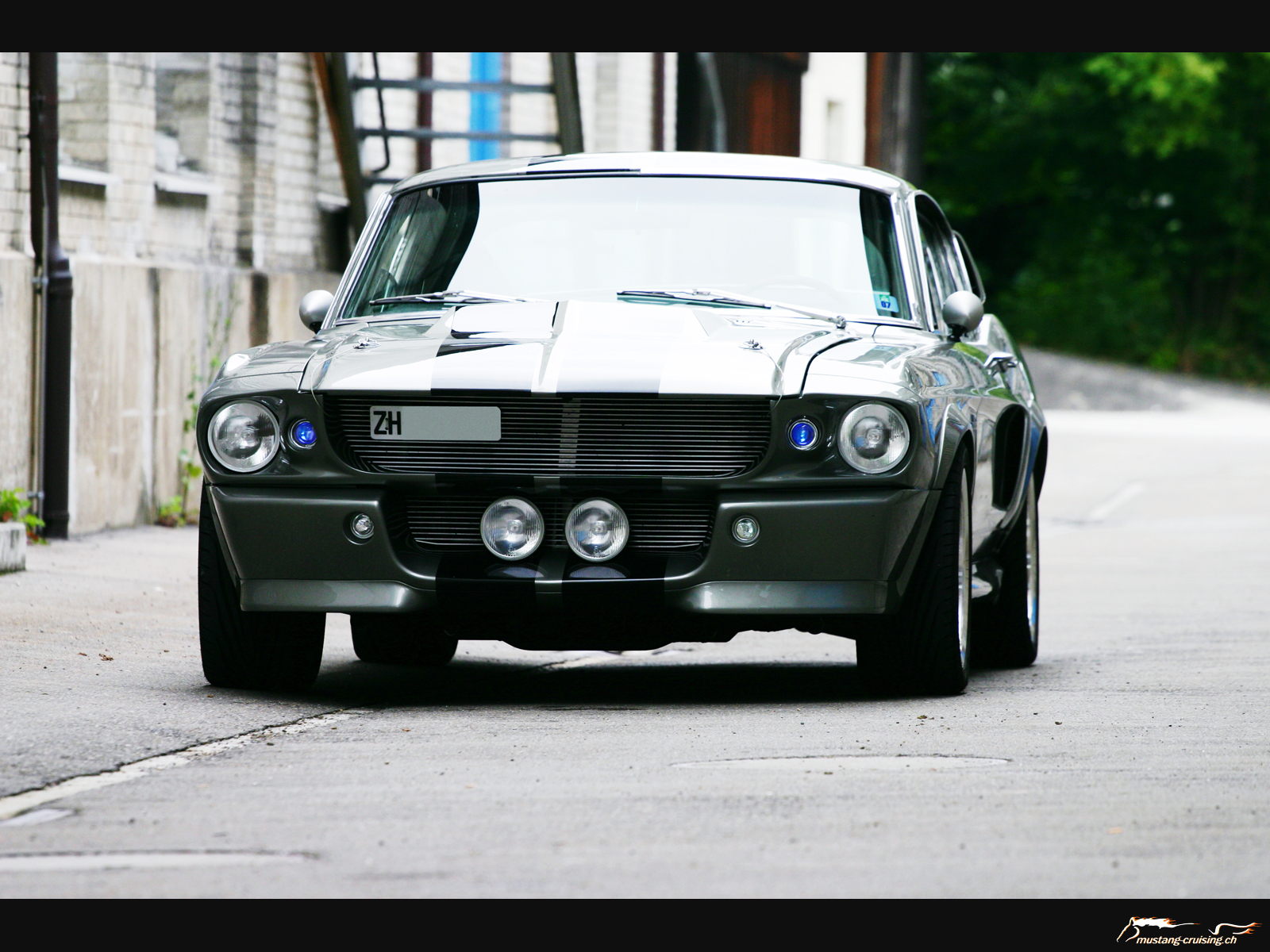 http://www.mustang-cruising.ch/cmine/albums/wallpapers/1964-1973/mustang-1967eleanor4.jpg